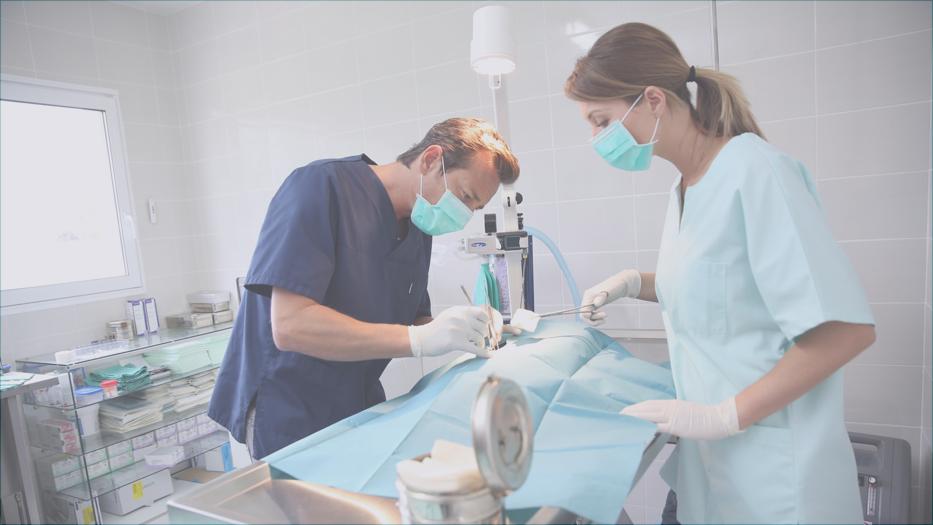 Equipamiento Veterinario: Camillas, Luces para Quirófano, UCI, Equipo de Anestesia, Monitores de Presión Arterial y más!